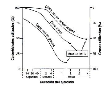 grafico-obesidad