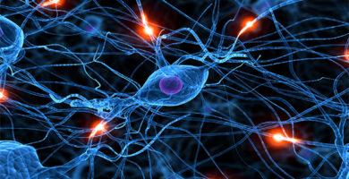 Conexión Neuronal