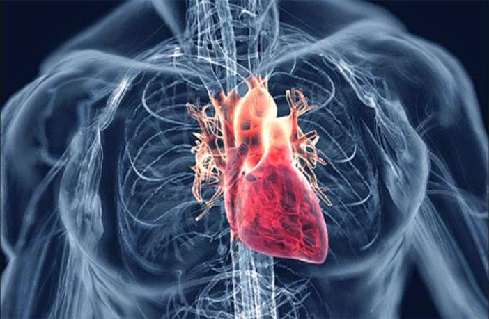 Enfermedades Cardiacas