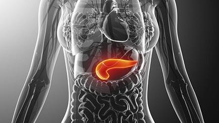 Ubicación del pancreas